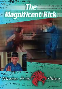 3101 magnifient kick