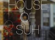 house-of-suh-mvd-indie