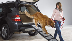 walk-up-dog-ramp-aluminum-expandable