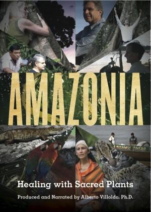 amazonia box art