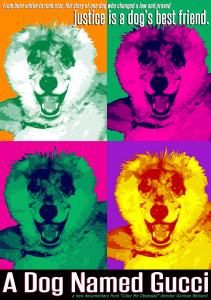 Dog named Gucci MVD8252D