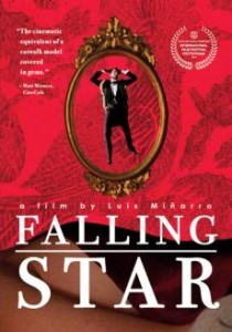 falling star 237854&w=230