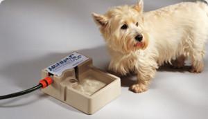 aquamat-dog-drinking-fountain-bowl-bottle-hose-01
